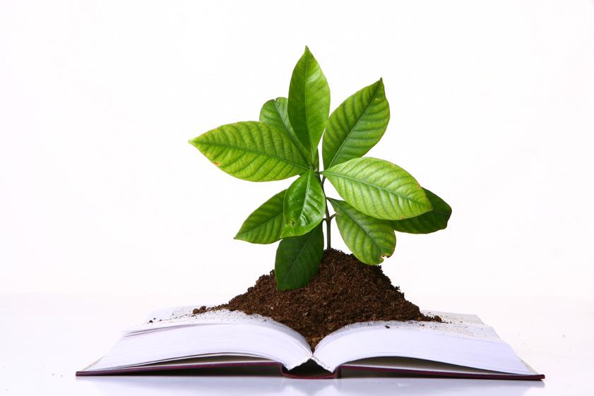 Iz knjige raste življenje